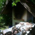 Das Brot aus dem Steinbackofen